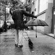 awwww-cute: Best umbrella ettiquette, spotted on the streets of NYC