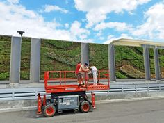 Yahoo! for Going Greener with G-O2® Green Walls