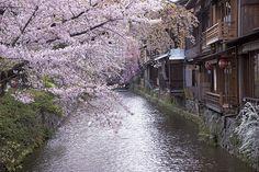 祇園白川(京都府京都市)