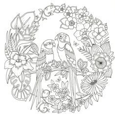 beautiful garden coloring page free printable coloring pages - 736×741