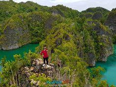 VISIT RAJA AMPAT INDONESIA www.rajaampat.biz #rajaampat #rajaampatbiz #travel #indonesia #tourindonesia #travelindonesia #visitindonesia #indonesiatravel #wonderfulindonesia #vacation #Индонезия #journey #holiday #bali #インドネシア Bali, Journey, Tours, River, Vacation, Holiday, Outdoor, Outdoors, Vacations