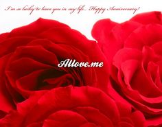 I'm so lucky to have you in my life. Im So Lucky, Lucky To Have You, You And I, Happy Birthday Dear, Happy Anniversary, Congratulations, Rose, Flowers, Cards