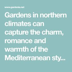 Gardens in northern climates can capture the charm, romance and warmth of the Mediterranean style. Plenty of shrubs from the Mediterranean region thrive in cooler climates, with the added bonus that most are drought tolerant and low-maintenance.