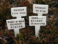 For our gnome garden
