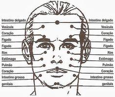 Mapa reflexológico completo do rosto, Veja como prever futuros acidentes e doenças através de simples sinais em seu rosto, com cada respectiva área de seu corpo;