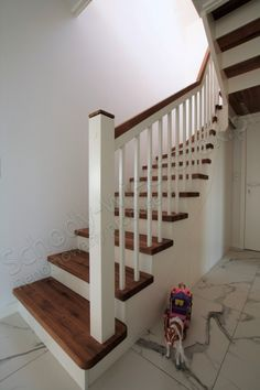 Schody drewniane policzkowe Half Walls, Aga, Stairs, Home Decor, Stairway, Decoration Home, Room Decor, Staircases, Home Interior Design