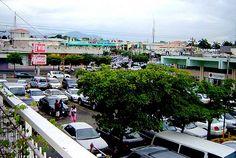 Flickr Kingston Jamaica, Spring