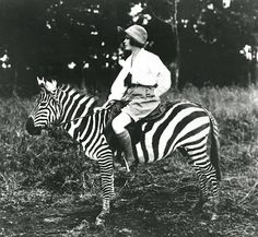 how to look cool riding a zebra