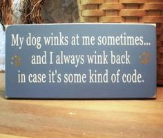 My dog wink at me sometimes...and I always wink back in case it's some kind of code.