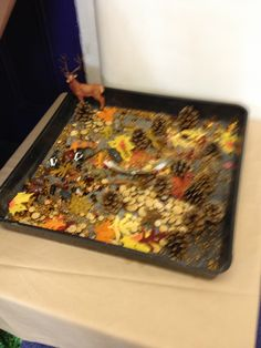 Autumn small world Early Years Teaching, Early Learning, Reggio Classroom, Classroom Displays, Fireworks Art, Tuff Spot, Continuous Provision, Foundation Stage, Tuff Tray