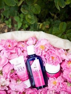 Weleda wild rose  #vivapura #viva #pura #weleda #beauty #products