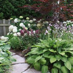 Love hostas..  Shade Garden Paths Design, Pictures, Remodel, Decor and Ideas - page 35