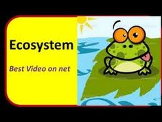 What is an Ecosystem for kids from Make Me Genius. This is a simple introduction to ecosystems.