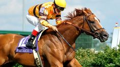 Recently retired Wise Dan, 2012 & 2013 Horse of the Year, will parade for fans at Keeneland on Saturday!