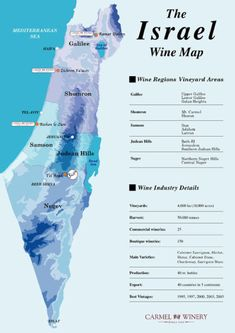 Wine map of Israel Wine Lovers, Wine Folly, Wine Vineyards, Wine Education, Wine Guide, Italian Wine, In Vino Veritas, Wine Online, Wine And Beer