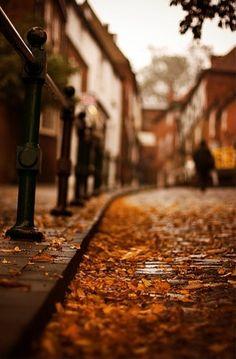 Very Autumn :-)