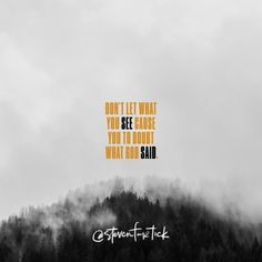 Don't let what you see cause you to doubt what God said. | Quote by Pastor Steven Furtick, Elevation Church