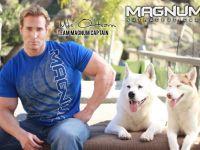 Me, my Akita Elvis, my Husky Stryker, and MAGNUM.-- Oh how I love Akitas and Huskies!!