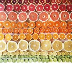 Beautiful Photography Arranged In Gradient Compositions Is Food For The OCD Soul