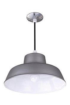 Canarm BL14CL All Weather 1-Bulb Suspended Mount All Weather Light, Grey
