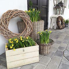 Ny inngangsdør hjemme og jeg er #utsultet# på påskeliljer etter at jeg har lett Tyrkia rundt etter friske blomster...Så her blir det gult en stund til...