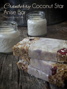 Raw Cranberry Coconut Star Anise Bar (raw, gluten-free, vegan)