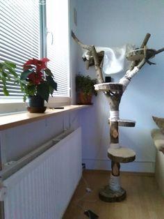 Kočičí škrabadlo přírodní strom - obrázek číslo 1