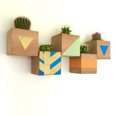 CUSTOM COLOR DESIGN Floating Cactus Cube Wood by LoliviaGifts