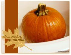 Cook Pumpkins in your Crock Pot - Authentic Simplicity