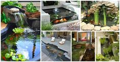14 Innovative Aquarium Ideas For The Backyard - Top Inspirations Diy Garden Projects, Water Features, Portal, Garden Design, Innovation, Backyard, Aquariums, Color, Inspiration
