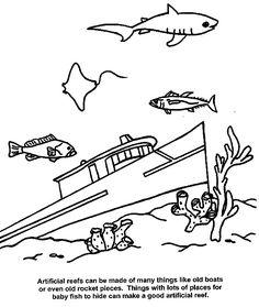 Elementary School Worksheets Ecology 11