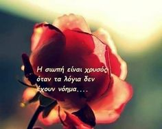 Greek Quotes, Picture Quotes, Quote Pictures, True Stories, Life Quotes, Wisdom, Letters, Thoughts, Words