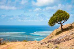 Vue sur le lagon - Rodrigues sauts-de-puce.fr #paysage #lagon #Rodrigues #voyage