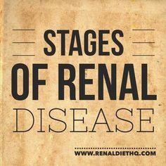 Renal Diet Menu, Dialysis Diet, Kidney Dialysis, Stage 3 Kidney Disease, Chronic Kidney Disease, Kidney Detox, Kidney Health, Kidney Flush, Kidney Foods