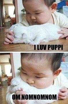 I luv puppi. Om nom nom nom...