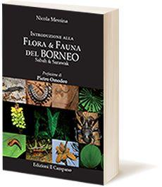 Introduzione alla Flora & Fauna del Borneo Sabah & Sarawak