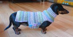 TRICO y CROCHET-madona-mía: Roupa para cachorro em croche