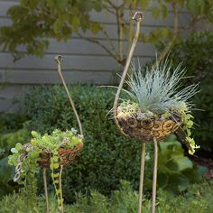 Recycled Metal Ostrich Planter Eco-friendly gifts for all agesIncluding ostrich planters, DIY lip balm kits, coffee bean necklaces, and more!Small Recycled Metal Ostrich Plant Holders - On Back Order - Art & Sculpture Handmade in Africa - Swahili Modern - Unique Garden Decor, Unique Gardens, Garden Decorations, Garden Planters, Succulents Garden, Succulent Gardening, Succulent Wall, Metal Planters, Design Jardin