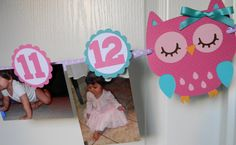 Colorful Owl Party First Year Photo by sweetheartpartyshop, $20.00