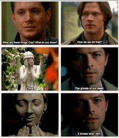 oh my god, just imagine an episode, where all angels Castiel have ever killed would turn into that and there would be panic everywhere, because people would just dissapear and Cas would have to somehow destroy his brothers AGAIN. *Doctor Who and SPN crossover*