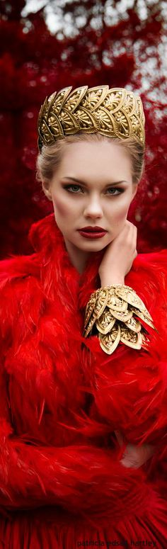 Red | Rosso | Rouge | Rojo | Rød | 赤 | Vermelho | Color | Colour | Texture | Form | Pattern | Style |