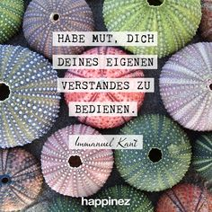 Happinez Mindstyle Magazin - Zitate German Quotes, Author Quotes, Authors, Love You, Snoopy, Motivation, Lifestyle, Learning, Live