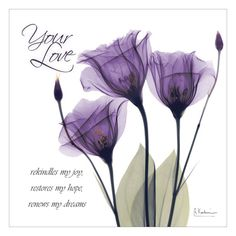 Statement Clutch - Black Tulip Fantasia by VIDA VIDA xpqYF6s