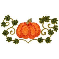 Pumpkin & Vine