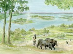 Earliest East Enders feasted on goat beef lamb and dairy products 5600 years ago Farm Animals Preschool, Preschool Painting, Types Of Farming, Animal Worksheets, Animal Bones, Farm Photo, Toddler Art, Animal Paintings, Livestock