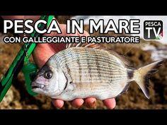 Pesca in Mare con Galleggiante e Pasturatore - YouTube