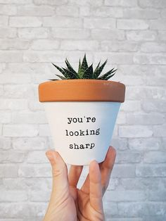 CUTE Mother's Day Gift - If she loves plants, this is the way to do it! Click to see more! YOU'RE LOOKING Sharp / funny planter / birthday plant / hand painted terracotta pot / clay planter / pottery planter