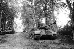 Tank photo. King tiger tank, July 1944 Chateu de Canteloup, Schwere Panzerabteilung 503
