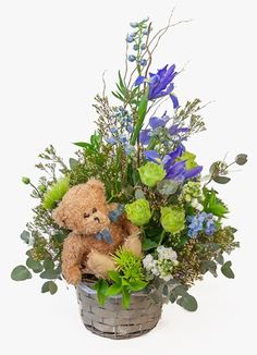 Gauteng Flower & Gift Delivery for all occasions. Whether you are looking for luxury or budget, our flower shops have what you are looking for. South Africa, New Baby Products, Gift Delivery, Teddy Bear, Flowers, Plants, Gifts, Presents, Teddy Bears