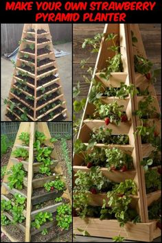 This Project Gives You Home Grown Strawberries in a Limited Garden Space Strawberry Planters, Strawberry Garden, Fruit Garden, Strawberry Tower, Strawberry Patch, Vertical Vegetable Gardens, Home Vegetable Garden, Herb Garden, Outdoor Planters